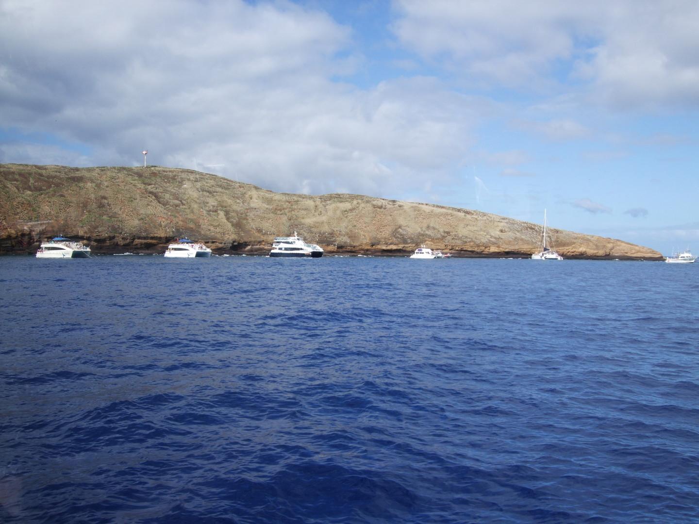今回のマウイ旅行の一番の目的だった、モロキニ島のシュノーケリング。 日本人ガイドのタカコさん、とても親切な対応をありがとうございました。 海がとてもきれいで感動しました。船での食事もおいしく、 また参加したくなりました。 たのしい思い出をどうもありがとうございました。