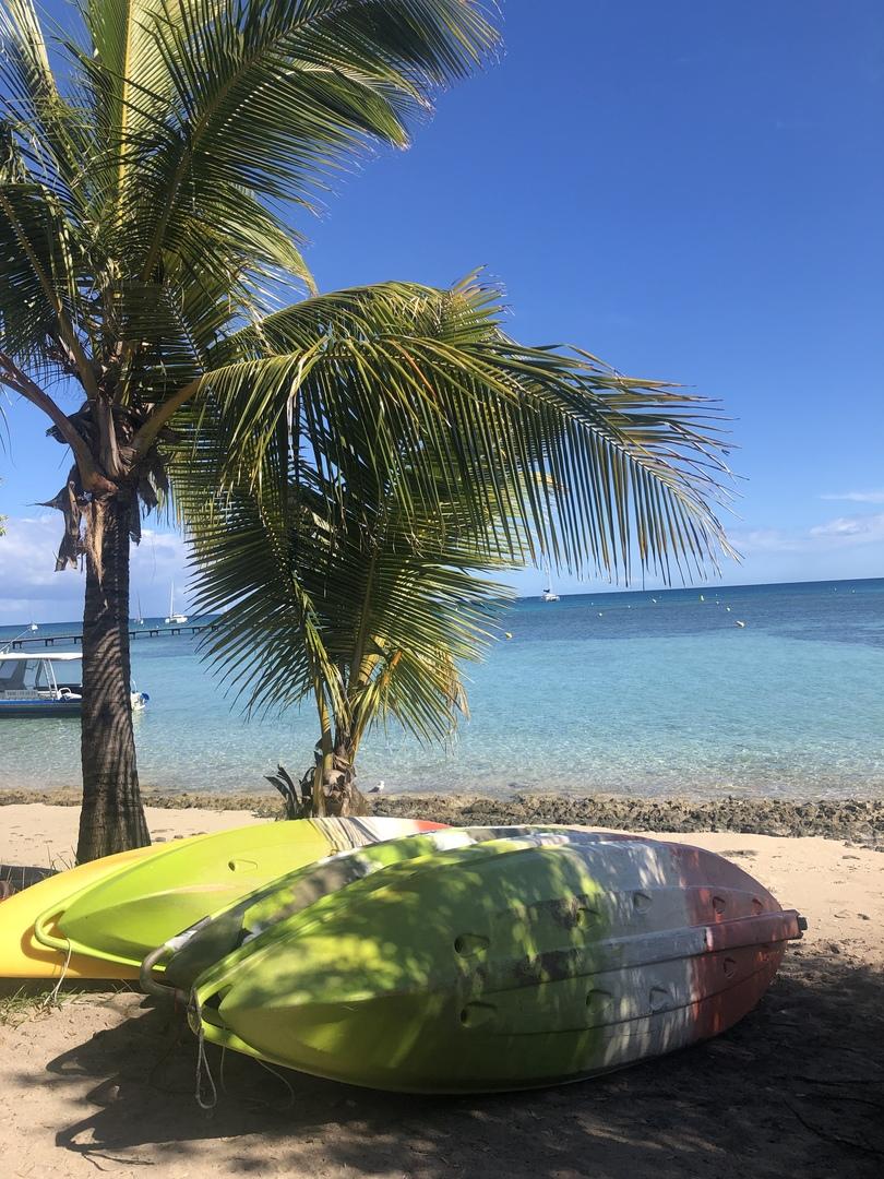 今回は シュノーケリングとカヌーのプランを選びました‼︎自分の好きなタイミングで シュノーケルのセットやカヌーを借りられるので、ゆっくり自分たちのペースで楽しむことができました‼︎めちゃ綺麗な海に感動し、またお魚にも、カメにも遭遇することができました!! ツアーを申し込んでよかったです‼︎