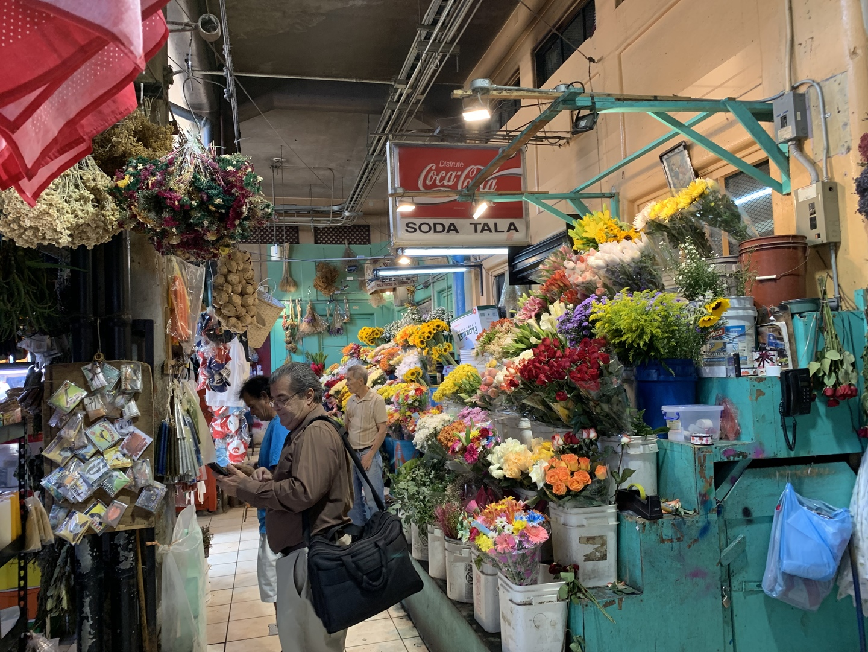 友人と現地で落ち合う前の暇つぶし参加した、サンホセ市内観光でしたが、予想以上に楽しめました。  メキシコ人ガイドの喋る、ラテンアクセントの超早口英語には少々苦戦しましたが、初めてのコスタリカでは多分尻込みするような中央市場への訪問を含め、非常に効率よく観光名所を巡る事が出来ました。  又、昼食(費用に含まれる)は、ヨーロッパや北米各地から来た観光客入り混じった合席でしたので、各々の自己紹介から始まる突然の国際交流となり、大変楽しいものとなりました。参加してとても良かったと思います。