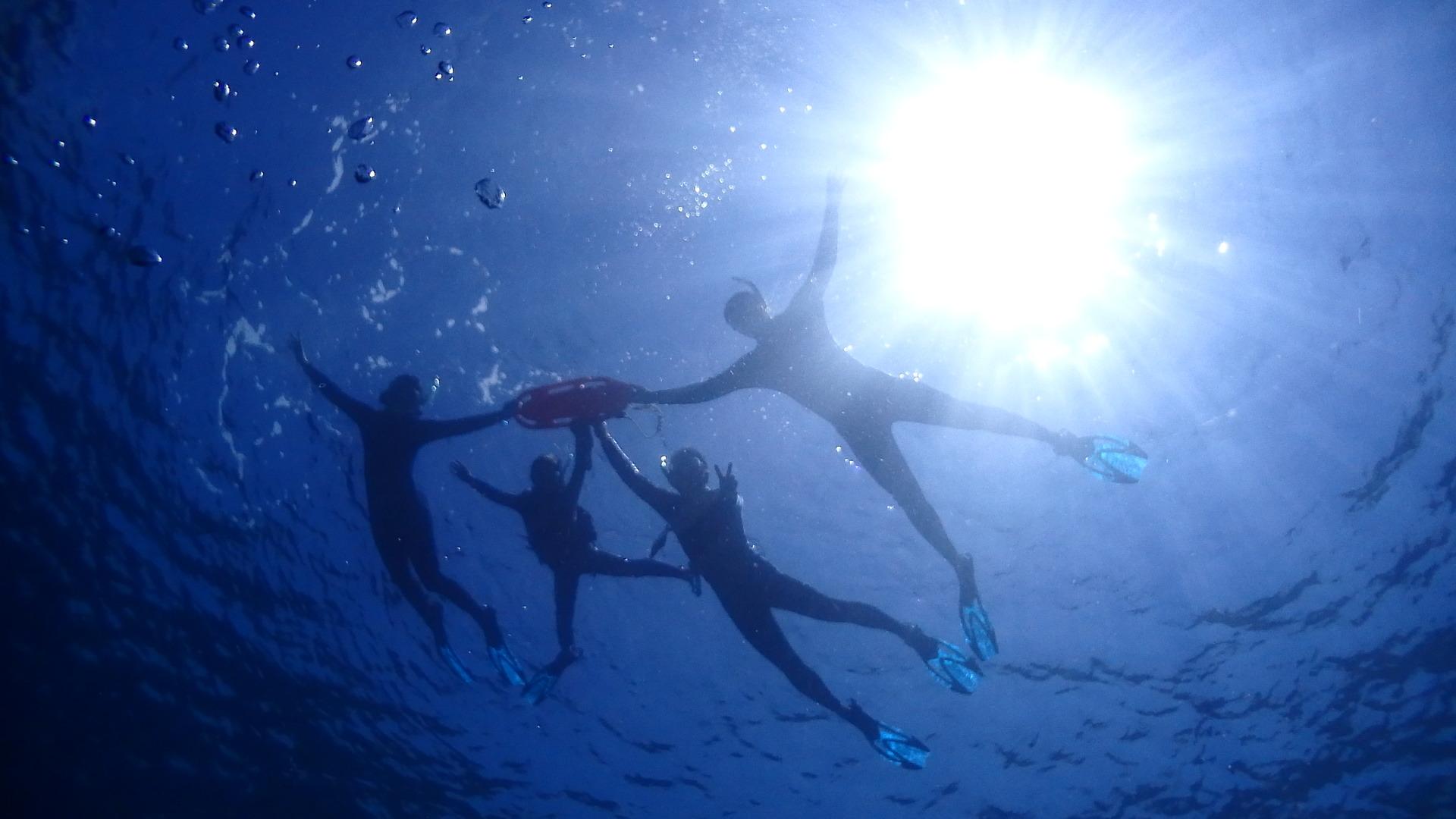 透明度が高く、とても楽しかったです。プールで撮った写真かと思うほどです。 ジンベイザメにタッチできたら5つ星だけど、それはまあ、ジンベイザメさんのためを思えば、仕方なし😅かな。