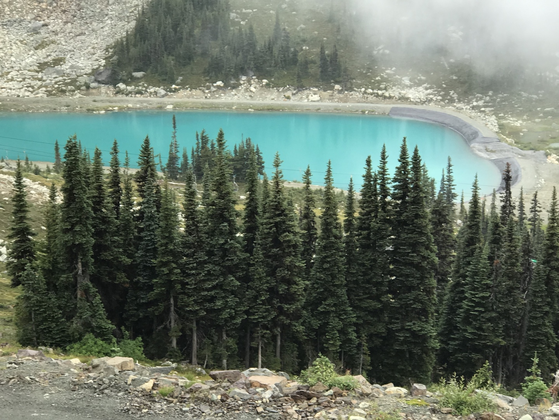 夏休みを、ちょとしたきっかけでバンクーバに決めたので、1日は、スキーに夢中になっていた若い頃、憧れだったウィスラーに足を伸ばしてみました。 お天気は、曇りで残念だったけど、ゴンドラも乗れて、雄大さに触れることができて、楽しみました。 添乗員の詳しい説明で、カナダの歴史も勉強になったし、より深くカナダを知ることができました。