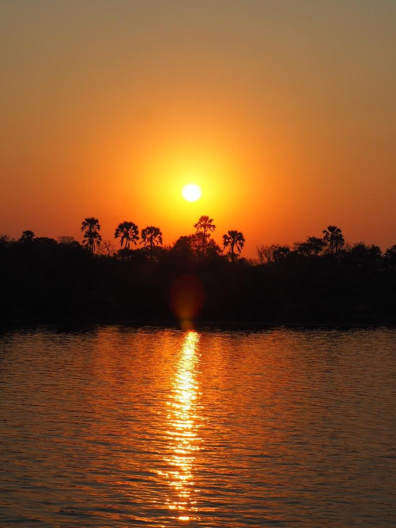 到着日プランで参加しました。ビクトリアフォールズ付近のホテルからはすぐにザンベジ川のほとりの船着場に着きました。フリードリンクでザンベジラガーというローカルビールを飲みながら出航です。夕方に水辺に集まる動物たちを見ることができます。18時過ぎからは夕陽のハイライト。真っ赤な夕焼けに色々な思いを乗せ、今日も終わって行きます。大自然の前では人間って小さなもんだなと思いました。