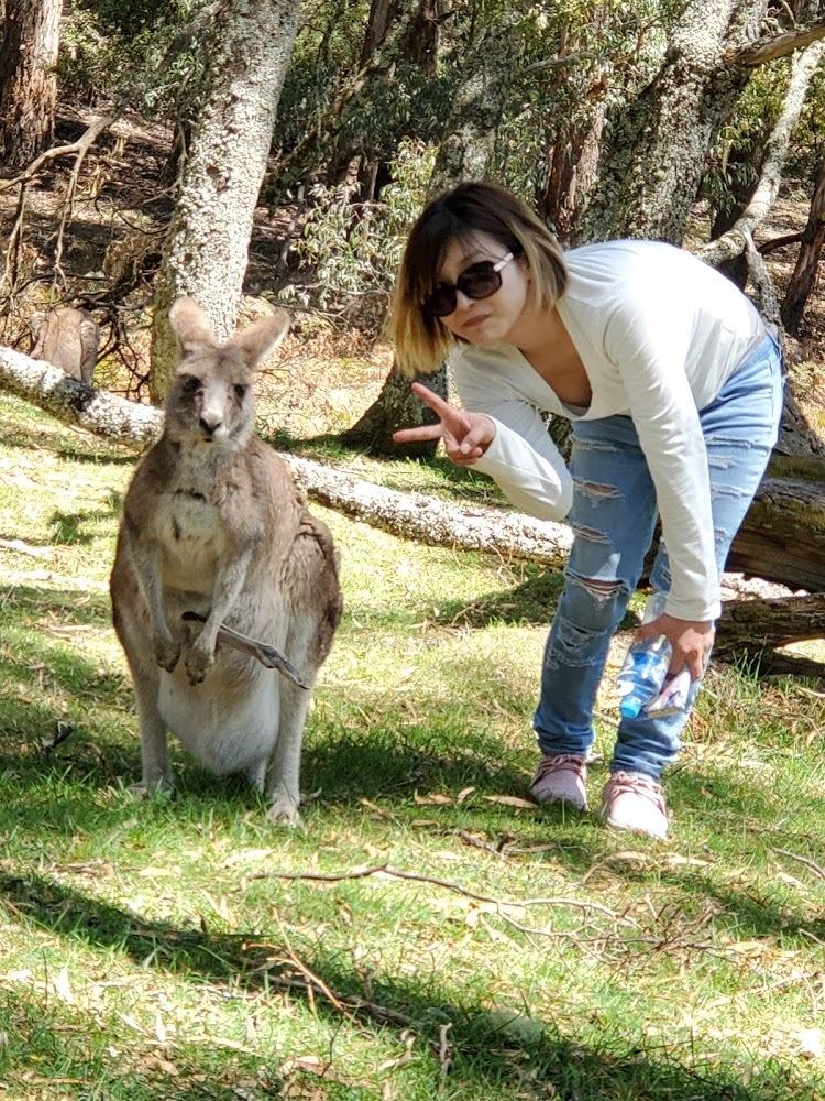 母の初めてのシドニー旅行ということでIECオセアニア様にお世話になりました。 口コミを見て期待して行った状態でしたが、さらに期待以上の経験をさせていただき大感謝です! 母もとても喜んでおり帰国した今もまたIECさんの他のツアーに参加したいと言ってます(笑) 小鷹さんというガイドさんに一日お世話になったのですが、一日中楽しい話、ためになる話をたくさんしてくれていろんなことが学べた一日でした! 何度かいろんなツアー会社のツアーに参加したことがありますが、こんなに熱意の伝わってくるガイドさんは初めてで嬉しかったです。少しでも良い物を沢山ツアー参加者に経験してほしい、そういう思いがいろんなとこから伝わってくるガイドさんでした! 小鷹さん最高!ありがとうございました! またいつか他のプランに参加しますね(^^)