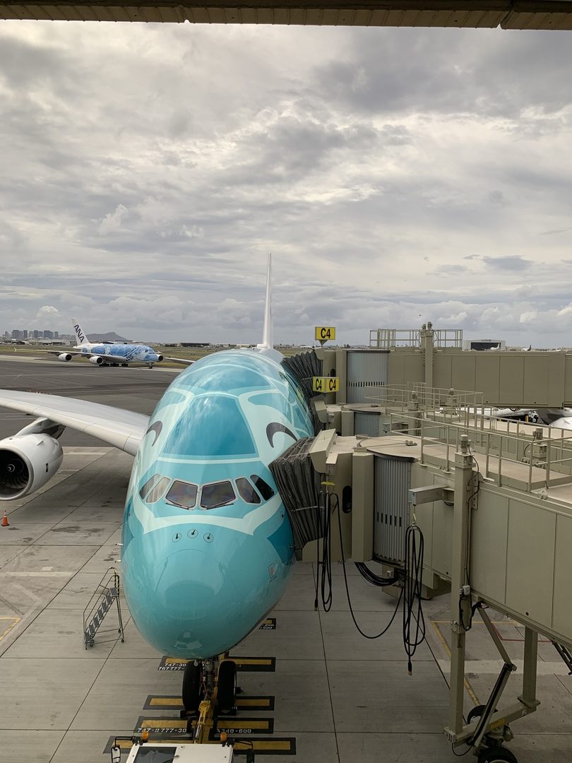 ハレイワ観光メインの方にはおすすめです。滞在時間が他のオプショナルツアーに比べ長く、ドライバーさんの対応も素晴らしく親切でした。通常はどこも現地ではバスターミナルの発着ですが、ハレイワタウン入口にあるワウラウハワイアンレモネード前で降ろして頂けたので北上するだけで観光でき、たっぷり楽しめました。