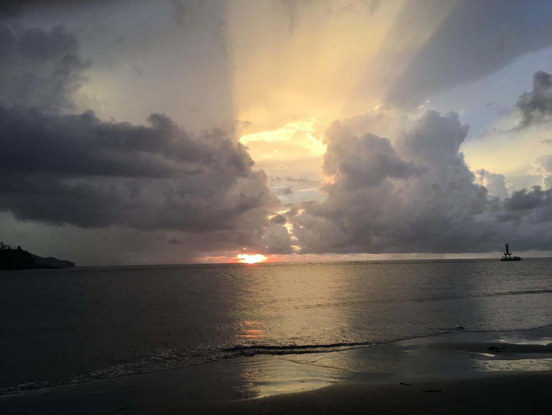 今回は姉と2人で参加しました。雨降りからのスタートでした。車の中は私たち2人。ガイドさんから説明を受け、半分諦モードで出発。夕日を待つ海岸では更に雨が強くなって来ましたが、夕日と反対側にはダブルレインボーが!なんだか良い予感。雲の切れ間から夕日が出てきました。なんとも幻想的でした。ガイドさんが沢山写真を撮ってくれ、ポージングまでしていただき、思い出に残る素敵な写真が撮れました。一度戻り夕食。食事中はかなり強い雨が降ってきました。蛍は無理だなと思ったところ出発。雨に濡れながら移動。どんどんマングローブの森の中へ進むにつれ雨が上がりはじめ、数匹の蛍を発見!数匹でしたが見れたので満足と思った瞬間ボートが止まりライトで点滅させると…沢山の蛍が!本当に感動、手のひらまで飛んで来てくれた蛍も!沢山の蛍を見る事ができ大大大満足でした。ガイドさんには大変親切にしていただきました。本当にありがとうございました。
