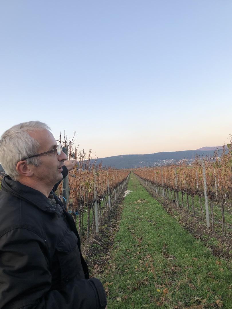 ワイン好きの友人と3人で参加しました。オーストリアのワインについてはよく知らなかったのですが、安価で高品質なことに感動しました。ウィーンから車で40分ぐらいで郊外の素晴らしい景色を見ることができ、ワイナリーではとても親切なオーナーさんのご接待で地元らしいおつまみとたくさんのワインを試飲させていただきました。ガイドさんもとってもワインの知識が豊富で思いがけずすばらしいウィーン旅行の想い出になりました。