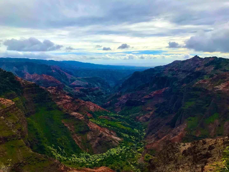 星5でも足りないほど、今まで参加したどのツアーより有意義な体験でした。大自然を体感してみたい、カウアイ島に少しでも興味ある方であれば、迷わず参加することをお勧めします。  当方、夫婦で2度目のハワイ旅行。主要な観光地は前回巡ったため、離島に挑戦してみようということになり、ハワイのグランドキャニオンことワイメア渓谷目当てでカウアイ島を選択。 複数あるカウアイ島観光ツアーの中で、ワイメア渓谷の展望台をたっぷり観れそうな当ツアーを選びました(代わりにシダの洞窟など等へは行きません)。 渓谷の景色は、何ということでしょう…と筆舌に尽くしがたいほど見事なものでしたが、何よりも素晴らしかったのは、ガイドのボビーさんです。ガイド歴30年以上、生まれ育ったカウアイ島が大好きで、この島の素晴らしさを知ってほしい、楽しんでもらいたいという思いに溢れていました。移動の道中も飽きさせません。植物学者かというほど豊富な知識で、車窓から見える景色を解説。まさかその辺に生えても木が、草が、世界に20本しか無いものだとは夢にも思いません(というよりそんな視点で見ていません)。 予定にないスポットへ行ったり(そのおかげで野生のアザラシやウミガメが見れました)、時間をずらしたほうが景色が綺麗だからと同じ展望台へ2回も行ってくれたり、ただ決められたメニューをこなすだけじゃない、思いと人柄に豊富な知識と経験がミックスされたまさに匠の技を存分に堪能できた充実の1日でした。  *お土産にボビーさん家の庭でとれたザボン(グレープフルーツみたいな柑橘系果物)をいただきました。帰宿後、剥いて食べましたが、これがまた大変美味しかったです。