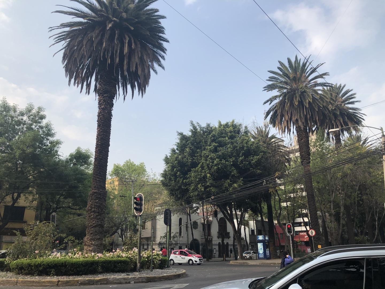 初めてメキシコシティに行きました。 メキシコといえば怖いイメージがありタクシー使うのも伝えることもできないので送迎をつけました。スペイン語ドライバーの方でしたが到着ゲートで待って下りさりとてもにこにこな方でうれしかったです。道が混んでたのでタクシーだったらいくらかかったわかりませんが事前に支払っているのでそんな心配もありませんでした。また行くことがあれば利用したいです。 ありがとうございました。