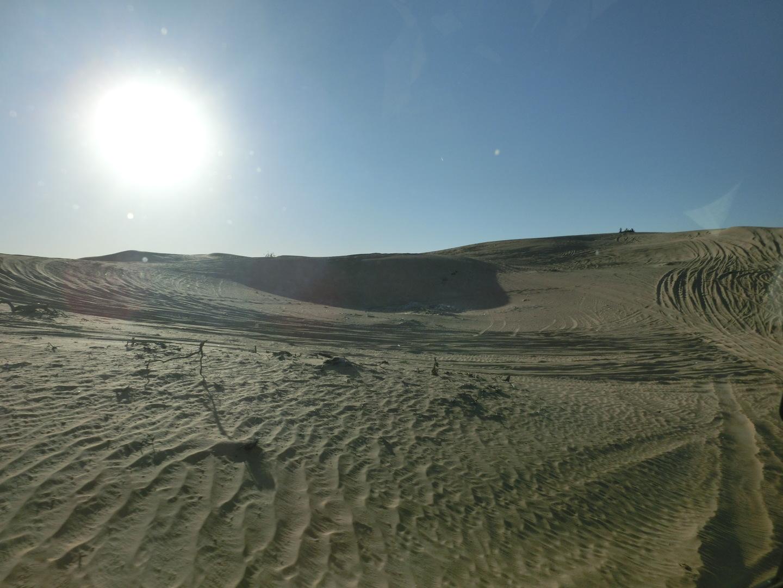 今回のドバイ旅行でデザートサファリに参加しました。 当日は12月だったのですが昼間は26度と暖かくTシャツ1枚で十分でした。一応、夜間に備え上着を用意しました。集合時間(14時45分)になり係員がホテルに来ました。約1時間で砂漠に到着。ドライバーはインド人で20年のベテランでした。約30分間、砂の斜面を四駆でドライブしました。とてもスリルあり楽しめました。ラクダのお散歩では約2分程度でしたが、ラクダは立ち上がると2m程になり、乗馬とは格段に違いました。乗客を降ろすときは前足を折り畳んで座りこむので前方に投げ出されそうになりました。 現地人の貸衣装を着ての撮影会やヘナタトゥーも女性のみ行い(1週間程度で消える)貴重な体験を出来ました。乾季であり砂漠では雲一つない晴天での日没は日本ではなかなか見られないとてもきれいな夕日でした。 その後、会場に入りアラビアンBBQを食べながらベリーダンスやファイアーショーを楽しみました。途中の休憩時間に鷹との記念撮影も有料で出来ましたが日没後であるのに鷹に対してのフラッシュ撮影は禁止と言われたので私は行いませんでした。 砂漠は日中と夜間の温度差が激しく日没後は13度まで下がり「厚手のパーカーが重宝しました」。20時頃には全てのショーが終わると同時に、ぼちぼちと観光客が減り私のバスも20時30分にはお迎えが来ました。終了時間が予定より早い気がしましたがショーが終わり会場内も冷え込み何より周りの観光客が激減したので帰るムードになりました。 帰りの帰路は沢山の車(何百台もある)が猛スピードで砂漠を走りダートトライアルのようで別な意味でスリリングがあり楽しかった。 これから今ツアーに参加する方に伝えたいのは、会場でのトイレの場所が分かりにくい(見つけられず立ち小便しようにも砂漠は障害物が無い上に終了時は大量の車が出るため車のライトが照らされて隠れる場所がありません)ことと、日中と夜間の寒暖の差が激しいので厚手の上着が必要ということです(身体が冷えるとトイレも近くなる)。それと帰りの砂漠道は高低差が大きいので、アルコールを飲まれる場合はほどほどにしておいた方がいいと思います。 ドバイに行かれる方は、一度はデザートサファリに参加されるといいと思います。日本では経験できないことや見られない風景があり、一生の思い出になると思います(何度見に来てもいいんですが・・・)。