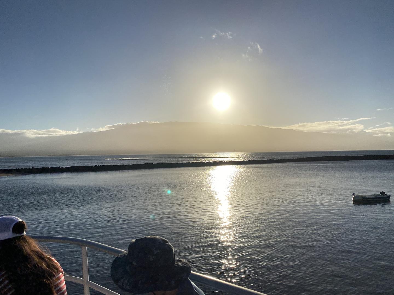 水族館で見るよりハワイのサカナ、フムフムヌクヌクが大きく沢山見られました。波浪注意報がでていましたが、船はあまり揺れませんでした。