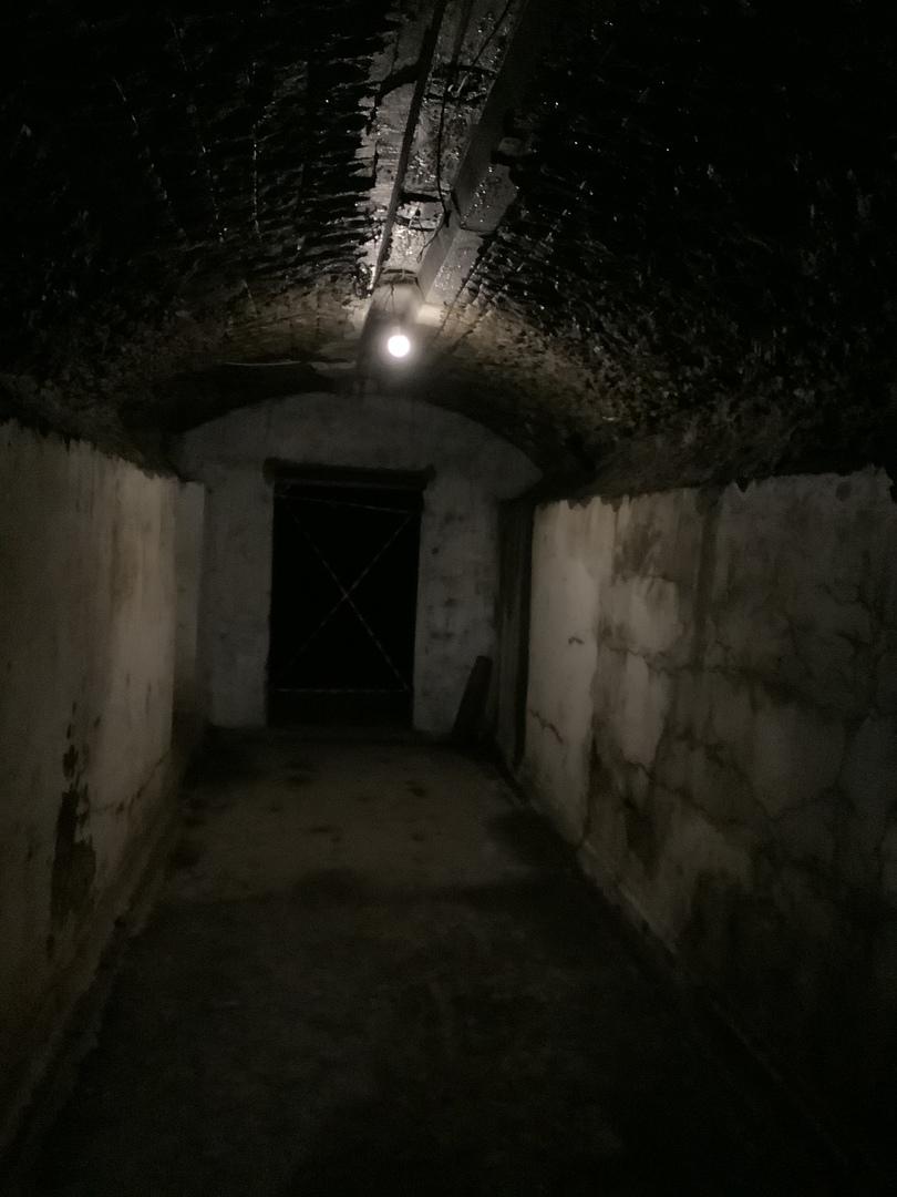 要塞ナンバーセブンに行きたくて参加したのですが、とても良かったです。予約必須(私の調べた限りではロシア語HPからの予約のみ)で、市内中心部からも遠く、個人では行きにくい場所なので助かりました。広大な地下要塞を懐中電灯片手に探検が出来ます。参加したのは12月で、要塞内部は外よりは暖かいのですが、常に息が白い状態です。階段も多いので、暖かく動きやすい服装をオススメします。 また、ガイドさんも良い方で、美味しいお店などを教えてもらい大変助かりました。スケジュールの密度は道路渋滞の状態でかなり左右されそうです。渋滞が無ければゆっくり回れる内容です。 冬のウラジオストクはとても寒いですが、観光客が少なめで、綺麗なクリスマスイルミネーションも素敵です。夏とはまた違った魅力を楽しめる思います。