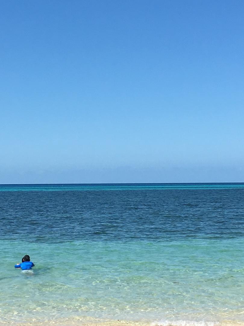 子どもが小さいため、行くかどうかギリギリまで迷って、現地で前日予約して参加しました。 青い海と空、白い砂浜、まだ小さな子ども達はそんなに沖までは行けませんでしたが、海亀を間近で見ることもでき大興奮でした。本当に行ってよかったと思います。