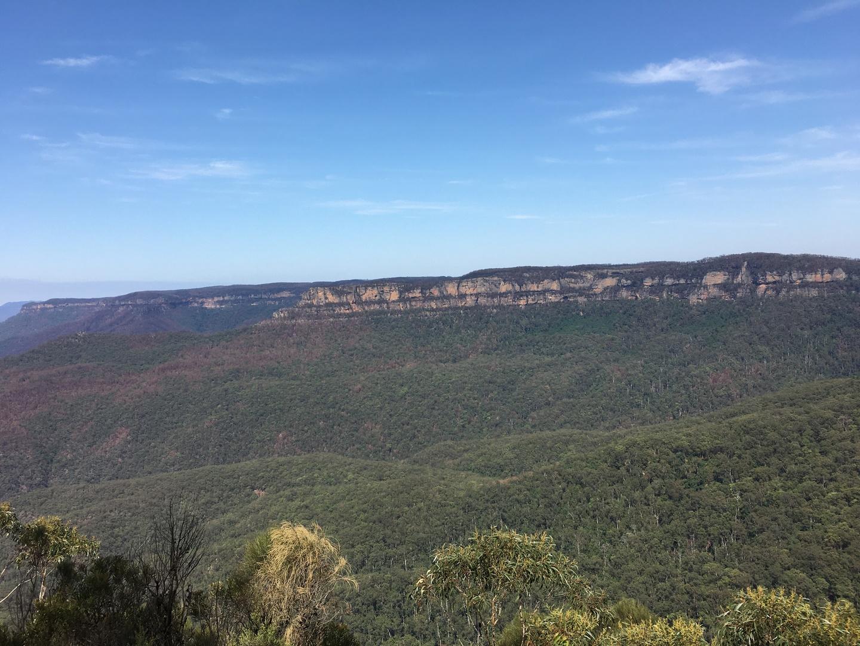 天気が良く山火事に影響もなかったので、素晴らしい景色を堪能できました。ガイドさんも親切な方で良かったです。