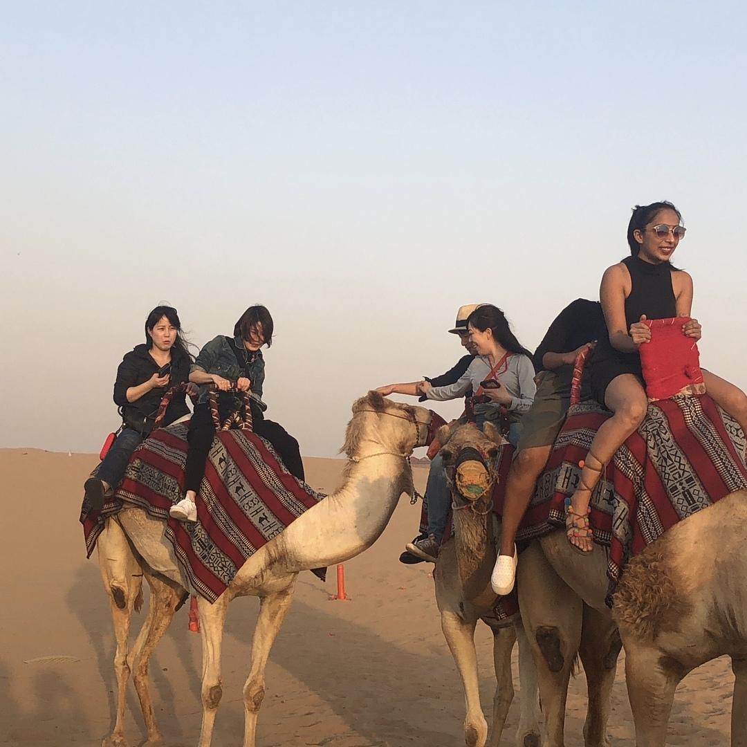 お迎えは本当に来るのか不安でしたが、来てからは大満足でした。  砂漠までの街中ドライブ 砂漠についてからの砂山ドライブ ラクダ無料搭乗 バギーやグライダーなど見れたりと。  バーベキュー会場でのフラダンスやフレイムパフォーマンス 無料のコーヒーや水、無料のおつまみ(唐揚げみたいなの)に加えビュッフェスタイルのBBQ アラブ衣装体験や水タバコも無料  帰りは夜景ドライブ  これだけのボリュームで約5000円は素晴らしいです。