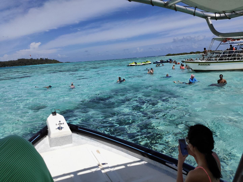 流れとしては、 1.朝ホテルから送迎、近くのビーチから船に乗り込み(自分たちは10人程度、同じ目的地への船もあり、50人程度×2艇ありました) 2.海からモーレア島の名所を案内しながらモツ島へ(英語ガイド)、途中野生のイルカにも出会えました! 3.モツ島近くでシュノーケリング この時サメとエイが近くまできて迫力満点でした!エイには触ることもできました!! 4.モツ島でBBQ BBQ開始までは村長のようなガイドがお客さんを弄りながらパレオ講座したり、公開調理したり、、、 BBQはブッフェスタイルで魚と鳥肉のBBQが最高においしかった 4.ご飯食べた後は1時間くらいモツ島でのんびり。人によっては退屈な時間かもですが、自分たちは海辺で遊んでいるとあっという間でした。 5.モツ島から船で島の反対側まで移動して、再度シュノーケリング。途中亀にも出会えました! 6.帰りは船でホテルの桟橋までそのまま送ってもらいました。  個人的にはとても楽しかったのですが、拘束時間が長いため人によっては退屈な時間も長く感じるかもしれません。後ガイドさんも カタコト日本語は話せるのですが、基本英語かフランス語なので、英語が分かるに越したことはありません。サメやエイなど様々な生き物に会えてお昼が最高に美味しかったので、初めてタヒチに行かれる方にはオススメです!