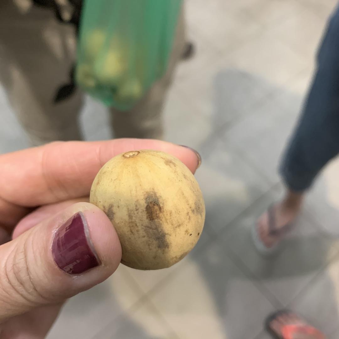 昼間の市内観光と合わせて 申込みました。 同じガイドさんだったので良かったです! ナイトマーケットでは ランサット というフルーツを ご馳走になりました。 初めて食べたけど 甘くて美味しかったです! ありがとうございました!
