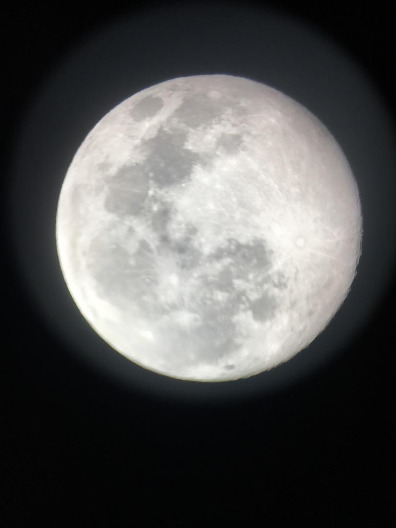 運転手兼ガイドのKOJIさんの軽快で楽しいトークでハワイ島の各所を巡りました。 溶岩トンネルが見られるようになった直後でラッキーでした。 マウナケア山麓からの星空観察ではほぼ満月であったため、少し見えづらい所は残念でしたが、月をクッキリと観察できたのは良かったです。 次回はマウナケア山頂から眺めたいです。