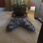 Image of Review by Kimberly H. on 15 Apr 2020 number 1