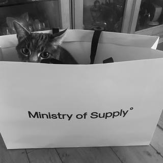 My cat Sonic approves of my new ministryofsupply purchase from their new Georgetown location.