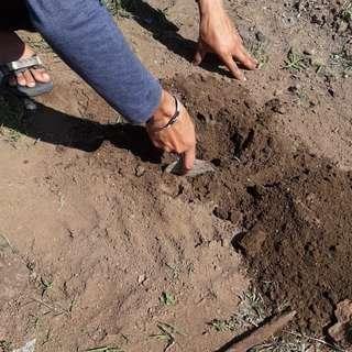 ministry_of_jal_shakti madhyapradeshwale plantingtrees._ ecosia afforestationproject indiaruraldev ministryofsupply meaindia mib_india mptourism unicefindia pibindia update_bus_bhopal bhopali_cuisine bhopali_epic_memes bhopal_ki_baatein bhopalcameraclub #k...