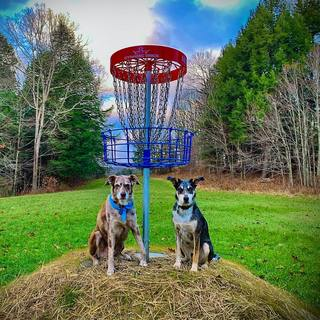 Guardians of the Chains!